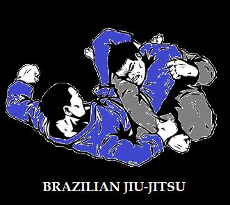 BRAZILIAN JIU JITSU / SUBMISSION WRESTLING
